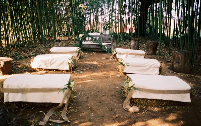 tenuta-dellOlmo-bamboo1
