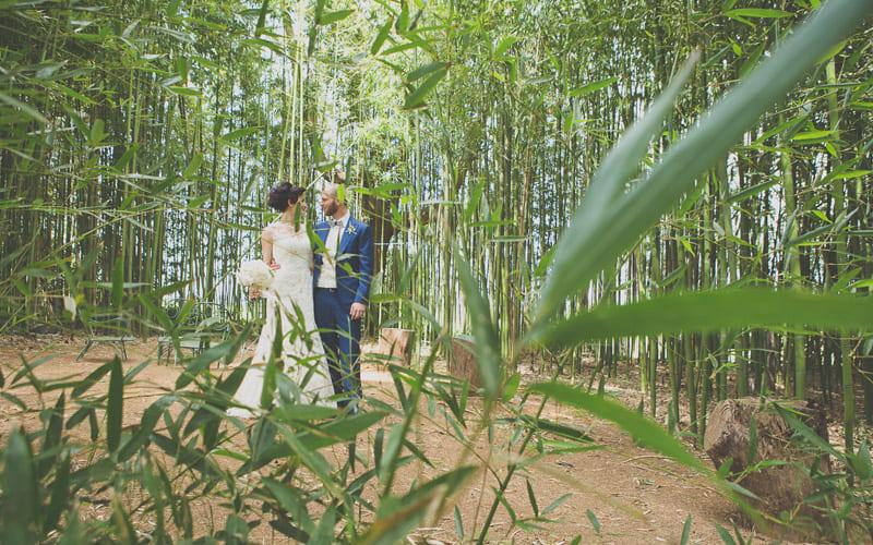 tenuta-dellOlmo-bamboo2