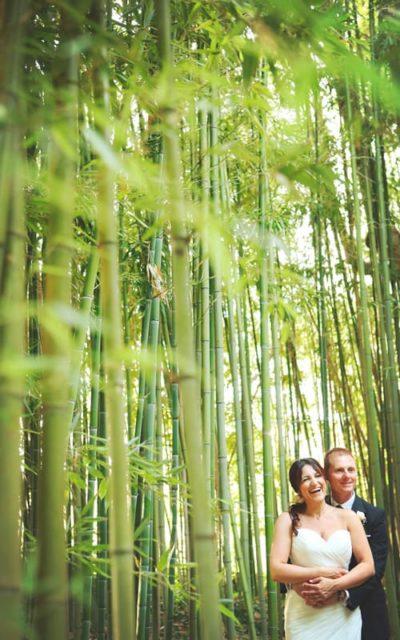 tenuta-dellOlmo-bamboo6