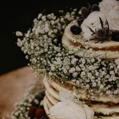 tenuta-dellOlmo-torta15