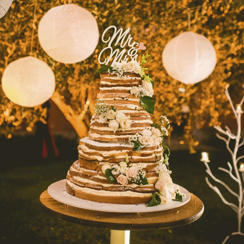 tenuta-dellOlmo-torta2