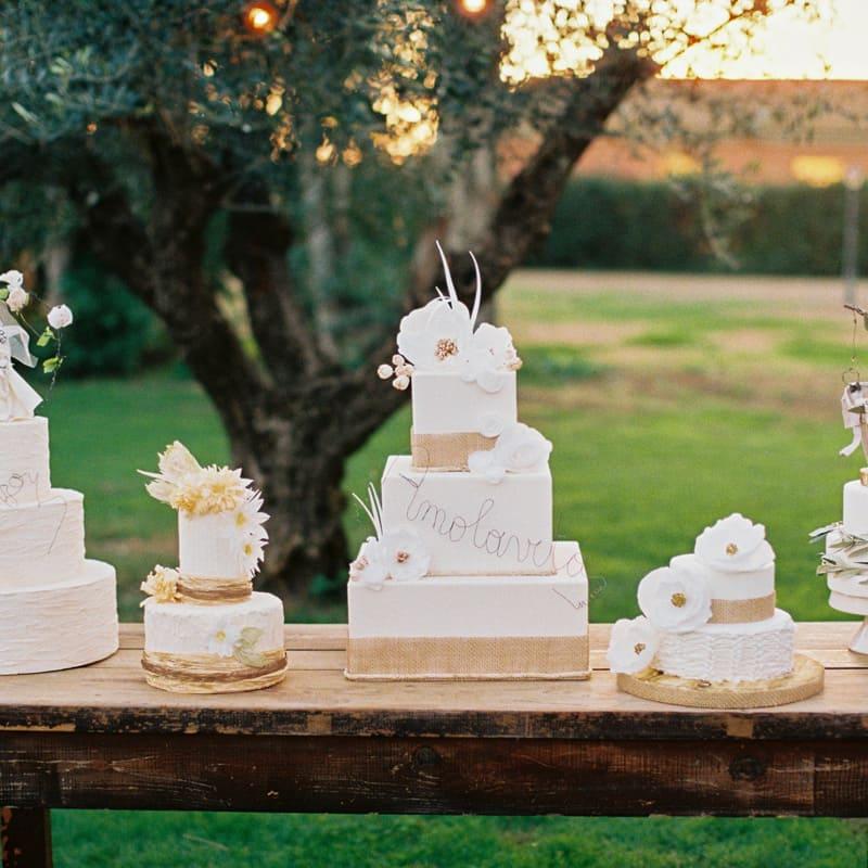 tenuta-dellOlmo-torta8